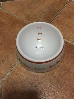 BN Ceramic Pet Feeding Bowl