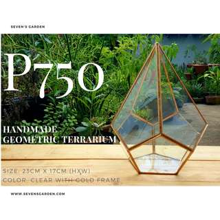 Handmade Geometric Glass Terrarium (Teardrop)