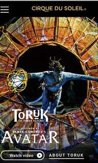 (Marked down! )Toruk the first flight avatar ( 1 ticket only ! 2nd june )
