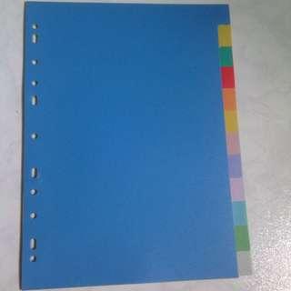 Plastic 12 tab file dividers