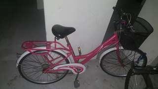 Ladies Bicycle with Basket