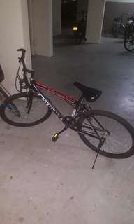 Male mountain Bicycle
