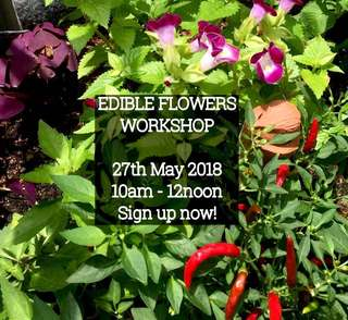Edible Flowers Gardening Course