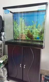 Fish Tank / Aquarium - Complete Set