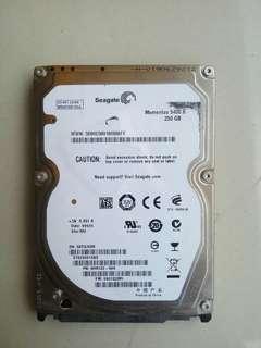 Harddisk Laptop 250GB