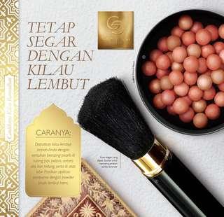 Giordani gold blush on dan brush