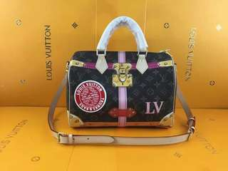 Louis Vuitton Bandoulliere Limited Edition trunk Collection