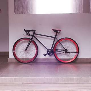 Fixie/Single Project Bike