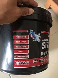 Mass Protein / Whey Protein America Pharma