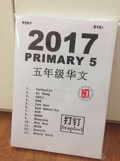 2017 P5 Chinese Schools Exam papers