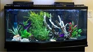 Aquarium Cristal black sand