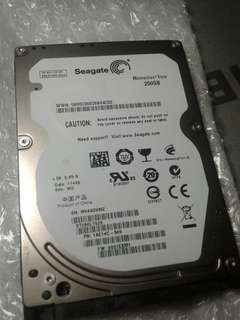 laptop hard disk 250gb