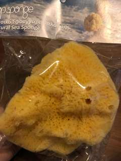 Natural Sea Sponge from Greece