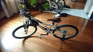 自行車 腳踏車 登山車 變速腳踏車