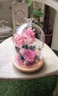 Preserved roses in jar!