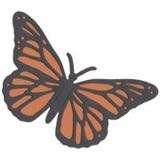 """QuicKutz®️ 4"""" Butterfly Die"""