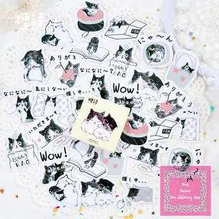 Set of 45pcs The Kitten Love Story Sticker Pack