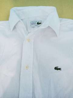Brandnew Lacoste plain long sleeve