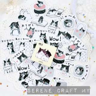 Set of 45pcs Cute Kitten Friends Sticker Pack