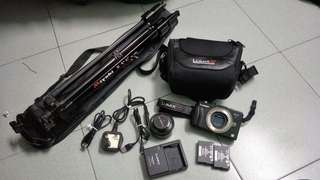 Original Panasonic LUMIX GX1