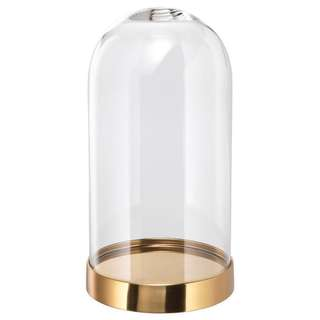 Small Gold Base Glass dome/Bell Jar (RENTAL)