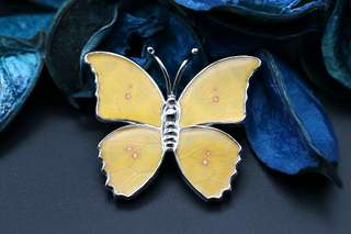 Navia Jewelry Butterfly Wing Phoebis philea Graphium weiskie Silver Pendant