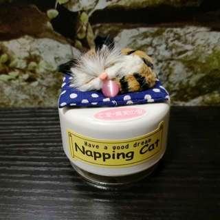 Napping cat music box