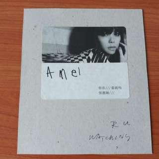 张惠妹你在看我吗 专辑 CD