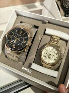 💯 Fossil couple set