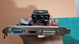 video card palit 8400gs