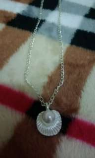 """Silver Pearl in Shell"""