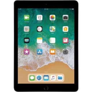 IPad (2017, Wifi, 32GB, Space Gray, Well maintained) for sale