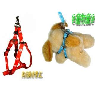@寵物瘋@~比人貴馬上降!小型可愛的兔兔訓練用牽繩+胸背帶溜兔繩超低價上市!項圈繩練
