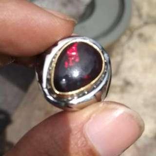 Black Opal Jarong Mantap Tetes Embun
