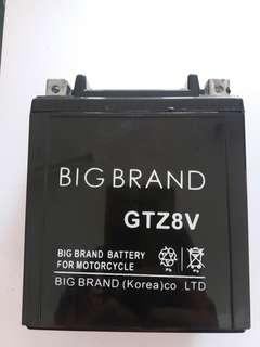 Battery motorcycle GTZ8V