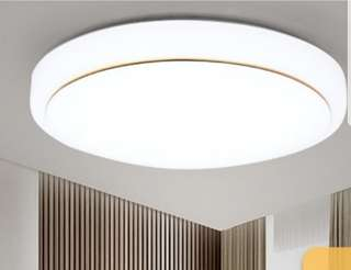 LED Ceiling Light -36 W white light