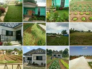 Tagaytay Farm Lot For Sale