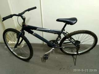 Mountain  Bicycle  (Single  speed)