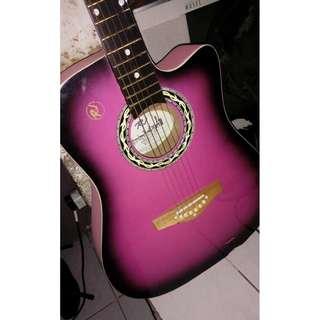 RJ Guitar (With Bag)