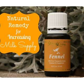🚚 [FREE MAIL]Young Living Fennel Essential Oil 15ml