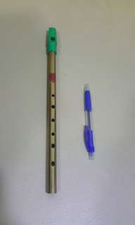 Tin Pipe Whistle (D major)