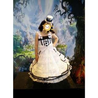 Alice in Wonderland inspired Kids Costume