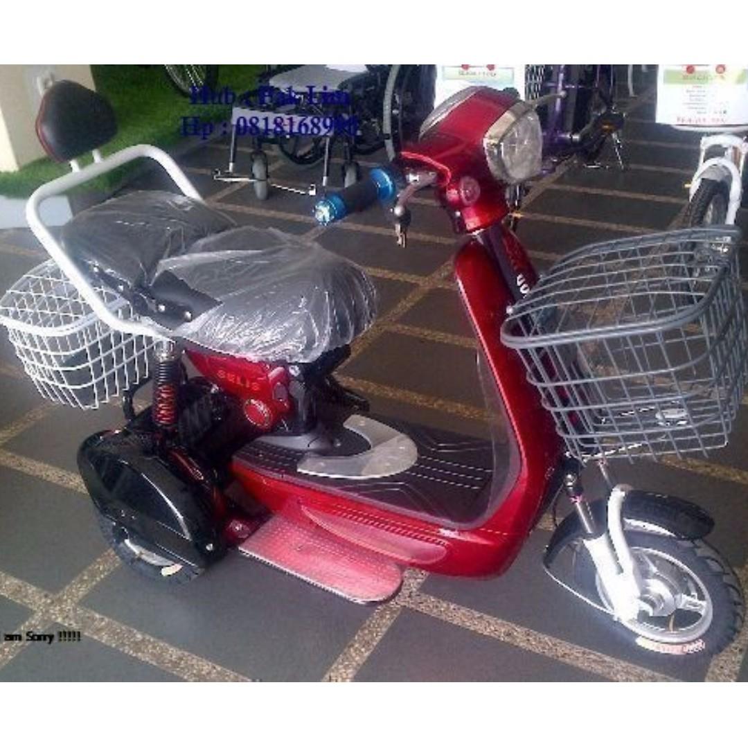 Sepeda Listrik Selis 3 Roda Olah Raga Sepeda Di Carousell