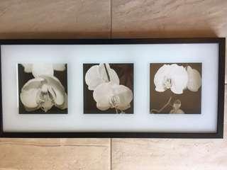 Floral framed photo