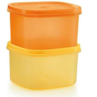 Tupperware Sunrise Easy Pack Large (2) 1.2L