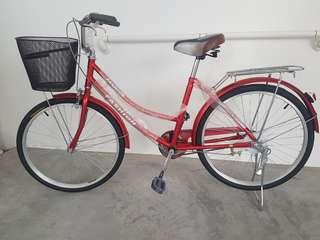Fashion Bicycle (BRAND NEW)