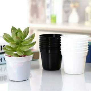 58mm cute pots 260 units free delivery
