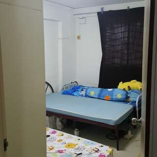 One ladies or boy share room ....1 june can come in