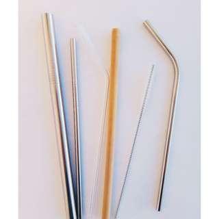Reusable Straws - set of 2 straws, 1 brush, 1 pouch