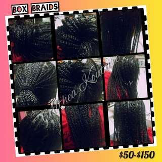 Box Braids (Srictly for Woman only)